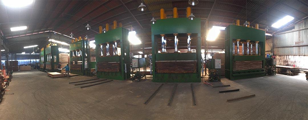 Nhà máy sản xuất Ván ép chống mối mọt