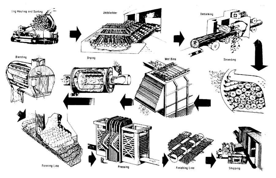 sản xuất ván OSB